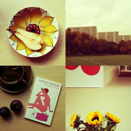 """""""Tussboll"""" på Instagram, hösten 2012"""