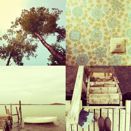 """""""Tussboll"""" på Instagram, vår/sommar 2012"""