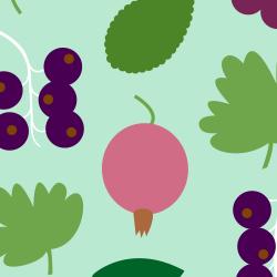 berries_2014_250px_jastren