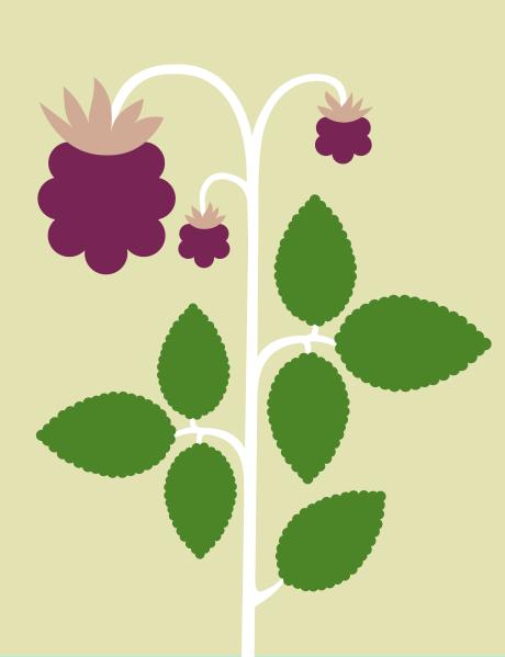 berries_3_2014_jastren